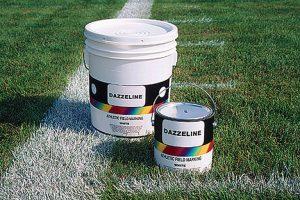 Dazzeline-Bulk-Paint